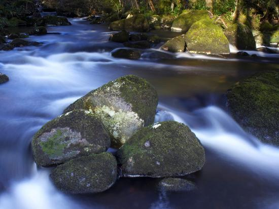 River Teign, Dartmoor National Park, Devon, England, United Kingdom, Europe-Jeremy Lightfoot-Photographic Print