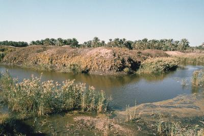 River Tigris by the Tower of Babel, Babylon, Iraq-Vivienne Sharp-Photographic Print
