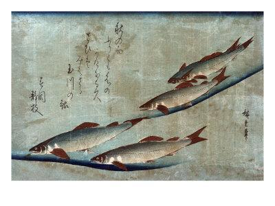 https://imgc.artprintimages.com/img/print/river-trout-japanese-wood-cut-print_u-l-q1gohuf0.jpg?p=0