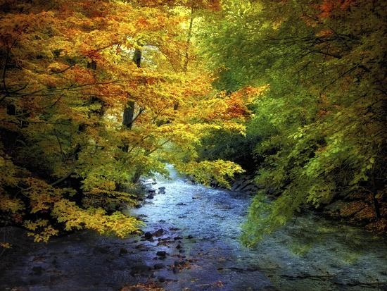 River View-Jessica Jenney-Giclee Print