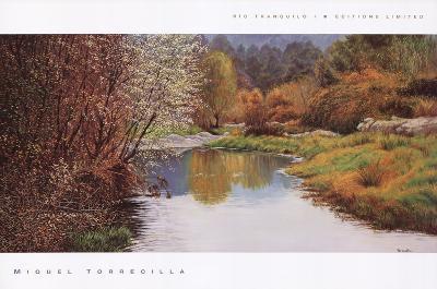 Ro Tranquilo I-Miquel Torrecilla-Art Print