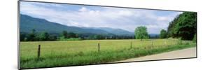 Road Along a Grass Field, Cades Cove, Great Smoky Mountains National Park, Tennessee, USA