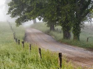 Road in Cades Cove, Great Smoky Mountains National Park, Tennessee, USA