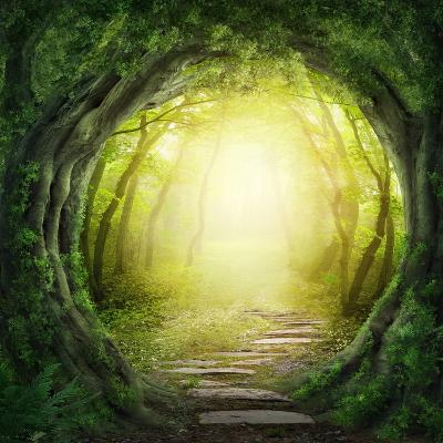 Road in Magic Dark Forest-egal-Photographic Print