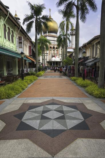 Road Leading to the Sultan Mosque in the Arab Quarter, Singapore, Southeast Asia, Asia-John Woodworth-Photographic Print