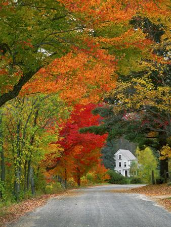 https://imgc.artprintimages.com/img/print/road-lined-in-fall-color-andover-new-england-new-hampshire-usa_u-l-pn6gtr0.jpg?p=0