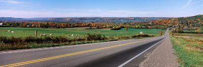 Road Passing Through a Field, Finger Lakes, New York State, USA--Photographic Print