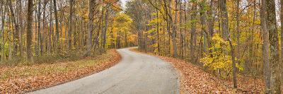 Road Passing Through a Forest, Brown County State Park, Brown County, Indiana, USA--Photographic Print