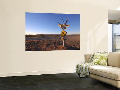 Road Sign Near Parachilna, Flinders Ranges-Michael Gebicki-Wall Mural