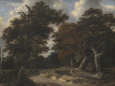 https://imgc.artprintimages.com/img/print/road-through-an-oak-forest-1646-47_u-l-punwi00.jpg?p=0