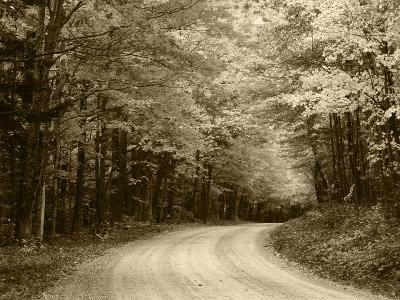 Road Through Autumn Trees, Green Mountain National Forest, Vermont, USA-Adam Jones-Photographic Print