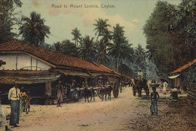 Road to Mount Lavania in Ceylon--Photographic Print