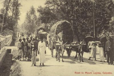 Road to Mount Lavania in Colombo--Photographic Print