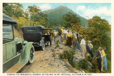 Road to Mt. Mitchell--Art Print