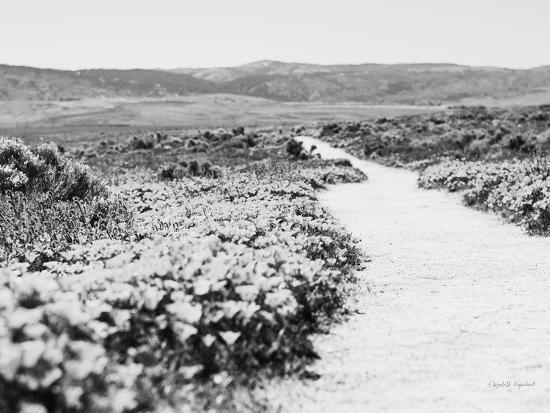 Road Trip VI Crop-Elizabeth Urquhart-Photographic Print