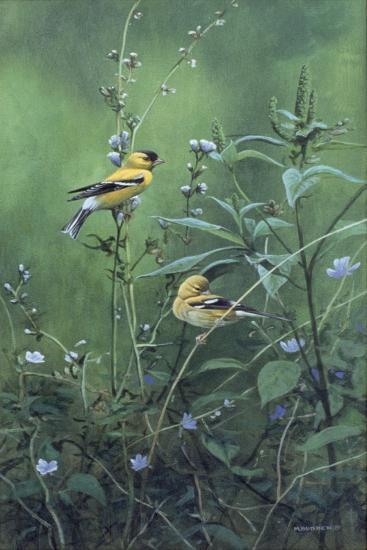 Roadside Bouquet-Michael Budden-Giclee Print