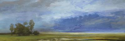 Roaming Skies-Mark Chandon-Giclee Print