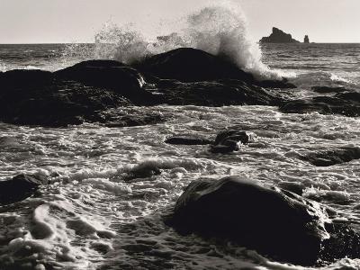 Roar of the Ocean-Brett Aniballi-Art Print