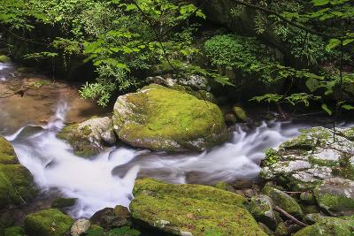 Roaring Fork Stream-Bob Rouse-Photographic Print