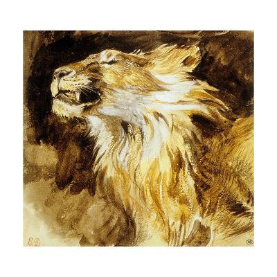 Roaring Lion, C.1833-35-Eugene Delacroix-Art Print