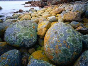 Granite Boulders at Wineglass Bay by Rob Blakers
