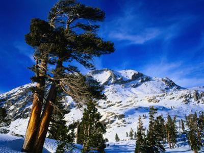 Snow Covered Mountain in Sierra Nevada, California, USA by Rob Blakers