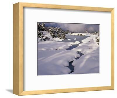 Snow on Franklin River, Cradle Mountains, Lake St. Clair National Park, Tasmania, Australia