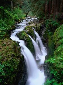 Sol Duc Falls Olympic National Park, Washington, USA by Rob Blakers