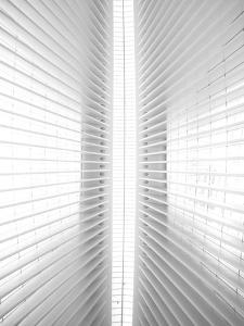 Inside Oculus by Rob Darby
