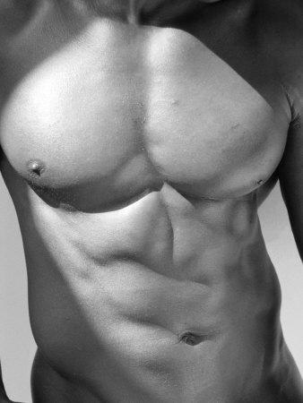 Muscular Shot of Male Chest and Stomach