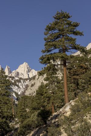Mt. Whitney, Alabama Hills, Lone Pine, California