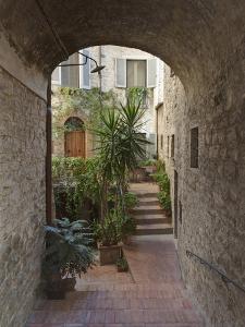Alleyway, Todi, Italy by Rob Tilley