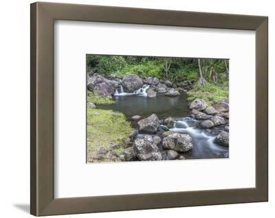 Hawaii, Kauai, Limahuli Garden and Preserve