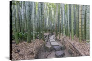 Japan, Kanagawa, Kamakura, Hokokuji Temple Garden by Rob Tilley
