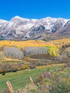 Ohio Creek Road, near Crested Butte, Colorado, USA by Rob Tilley