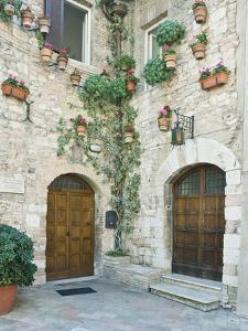 Old World House, Assisi, Umbria, Italy by Rob Tilley