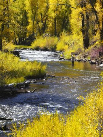 A Fly Fisherman Casts on Beautiful Autumn Day by Robbie George