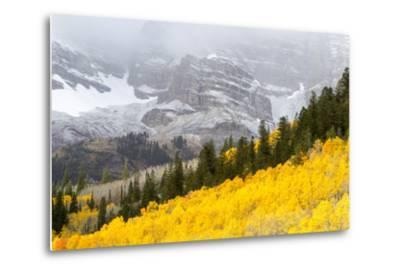 Aspen Trees Emit a Fiery Glow in Front of Snow-Covered Mountains
