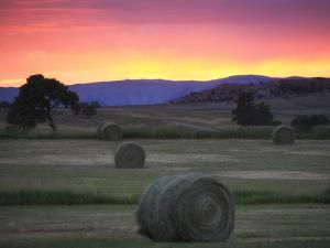 Landscape with Hay Bales at Sunset by Robbie George