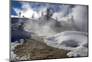 Steam Rising from Hot Springs in Yellowstone National Park by Robbie George