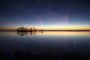 Sunrise with Light Pink Cloud and Planet over Lake Mattamuskeet and a Stand of Bald Cypress Trees by Robbie George