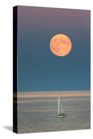 The Harvest Moon Rises over a Sailboat in Casco Bay
