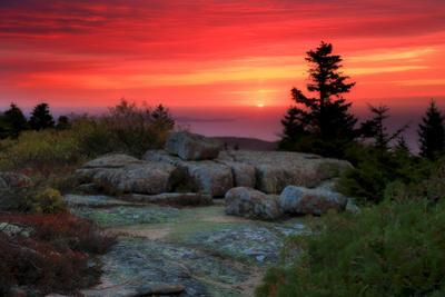 The Rising Sun over Atlantic Ocean and Boulders and Flora Atop Cadillac Mountain by Robbie George
