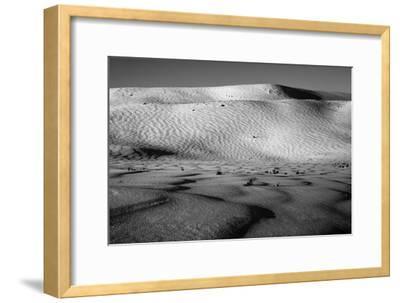 Wind-Driven Patterns in a Snowy Landscape