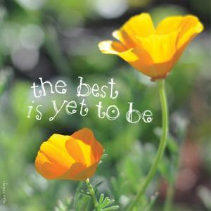 The Best Is Yet to Be by Robbin Rawlings