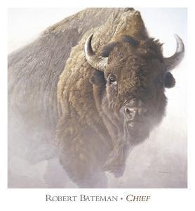 Chief (detail) by Robert Bateman