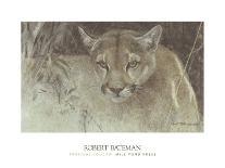 Chief-Robert Bateman-Art Print