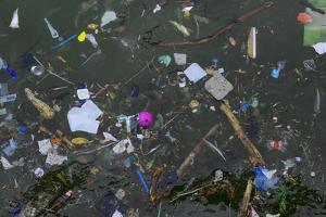 Flotsam in Seawater by Robert Brook