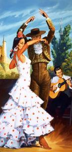 The Flamenco from Spain by Robert Brook