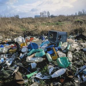 Wasteland Strewn with Plastic by Robert Brook